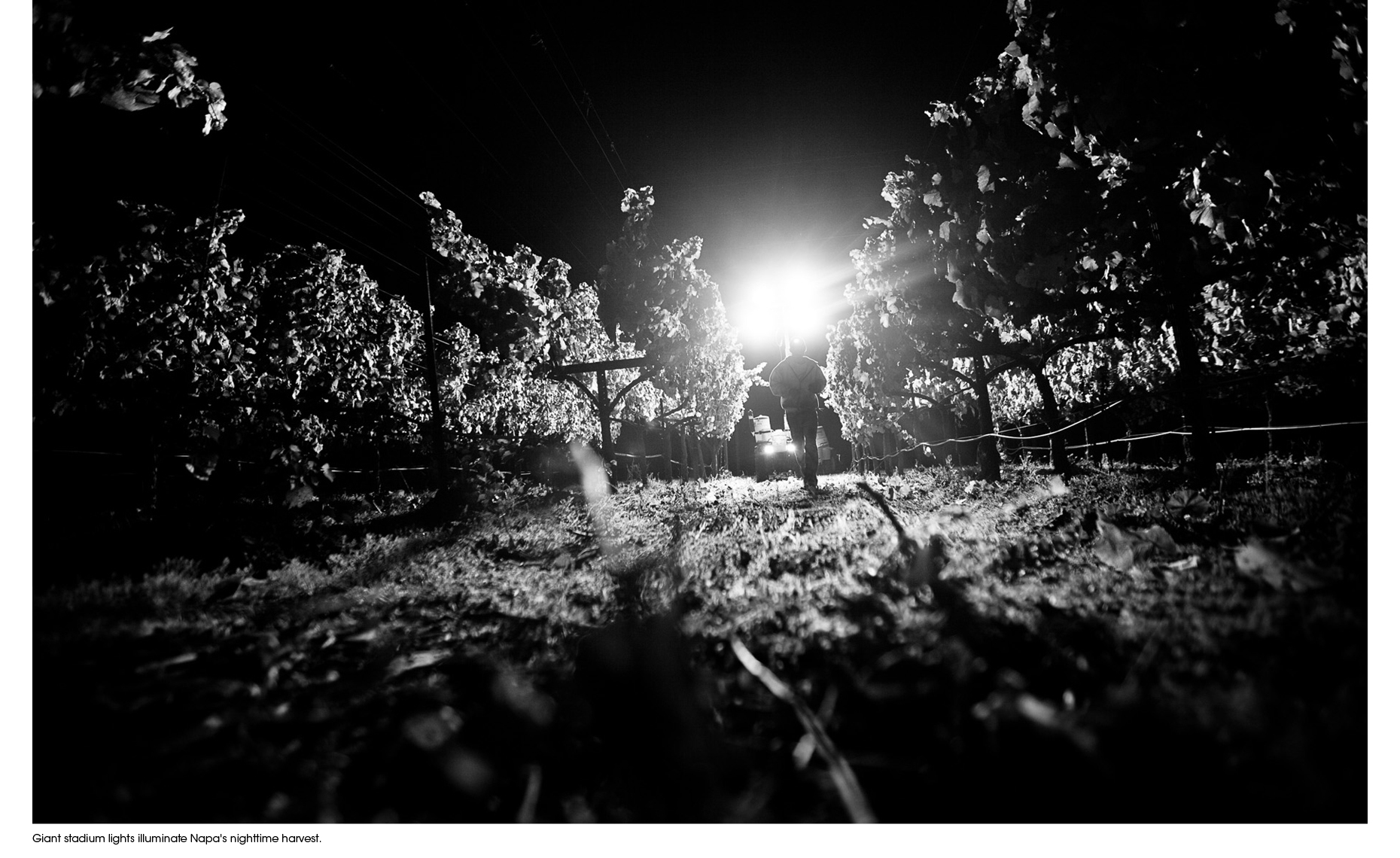 Migrant Farm labor documentary series of photographs by Forest Woodward fo Food Chains the film